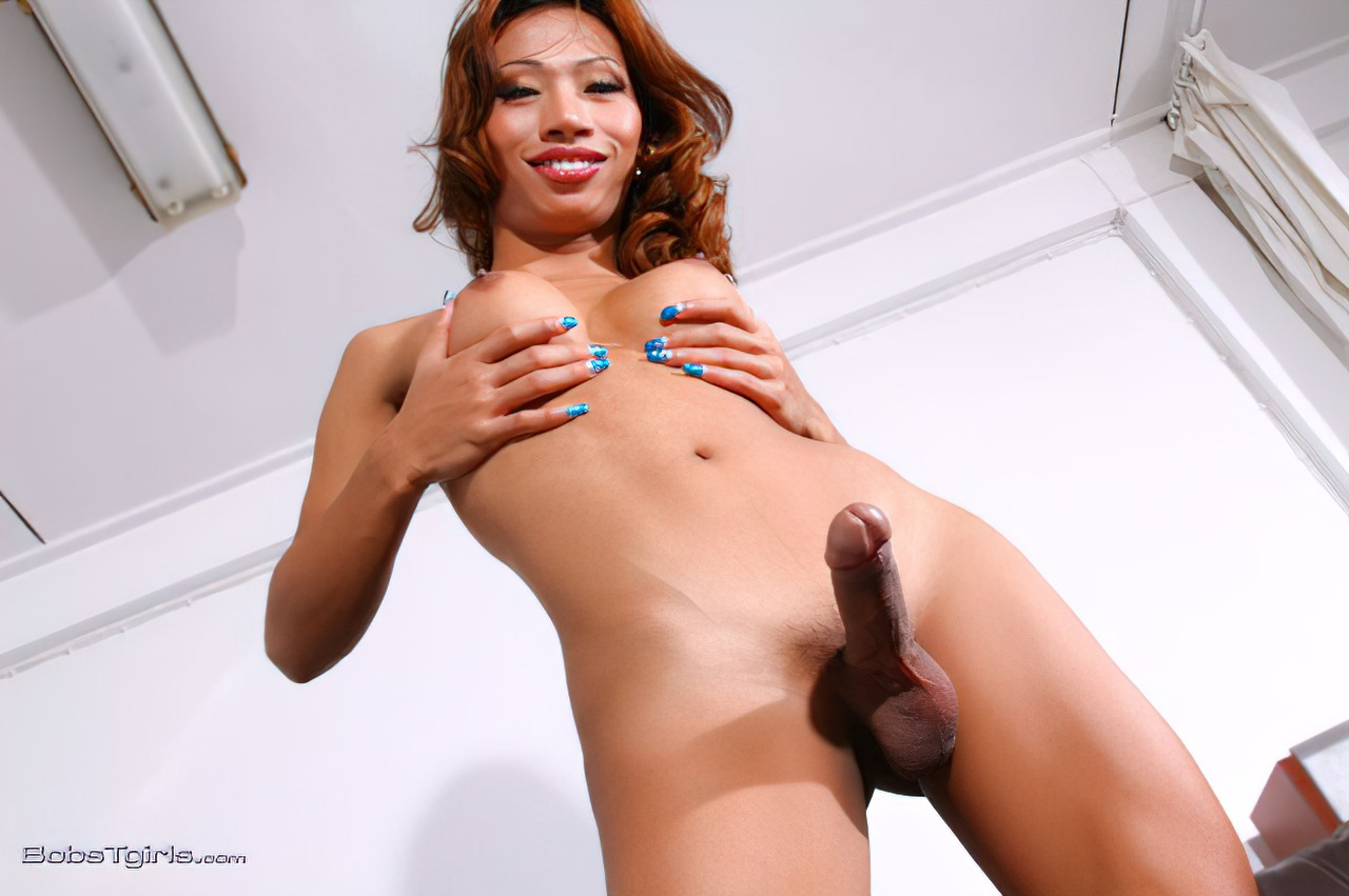 Transexual Oriental Sexy (8)